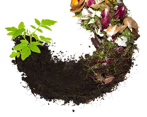 How to Create Compost and Its Benefits