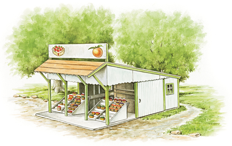 Starting a Roadside Fruit Stand