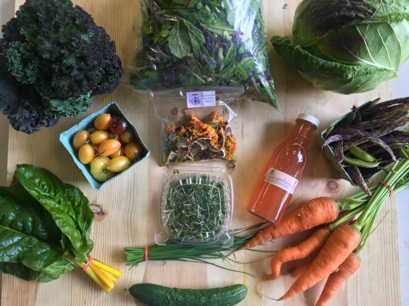 Artisan Produce at the Wellness Market