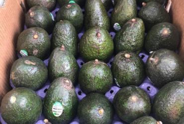 Cameroon Avocados: $6-$8 per 4kg box.