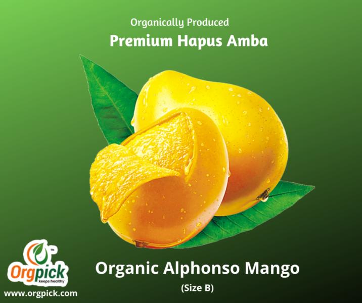 Best Online Organic Alphonso Mangoes|Premium Quality