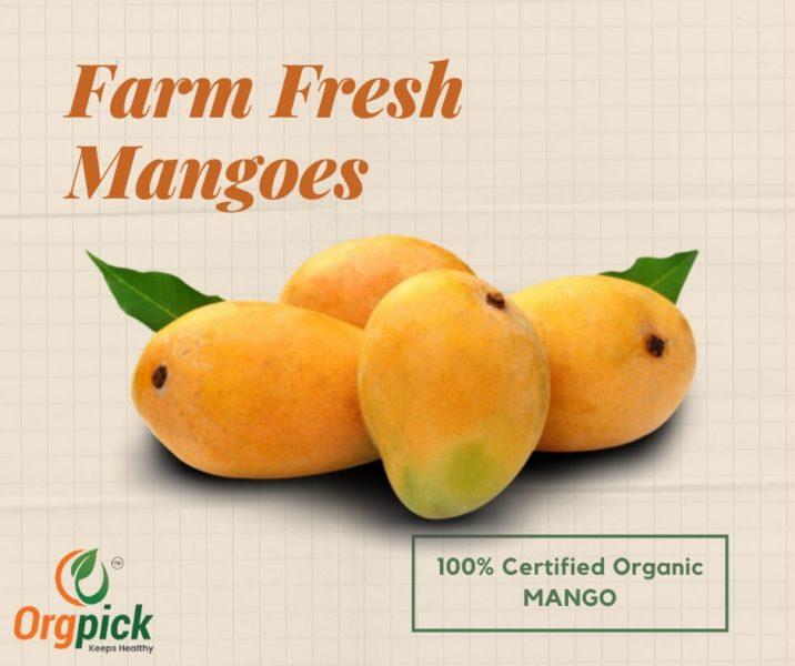 Buy Farm Fresh Mangoes Online