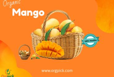 Buy Natural Mango Online|Organic Aam