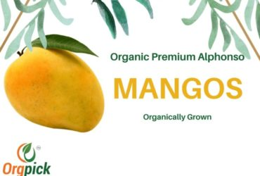 Buy Organic Alphonso Mangoes Online in Pune