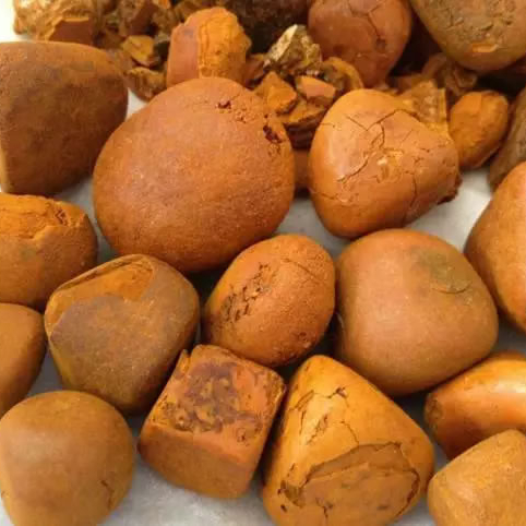 Grade A Cow Ox Gallstone Western Cape