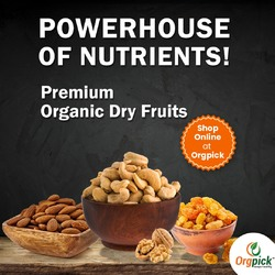 Shop Organic Dry Fruits Online at Orgpick