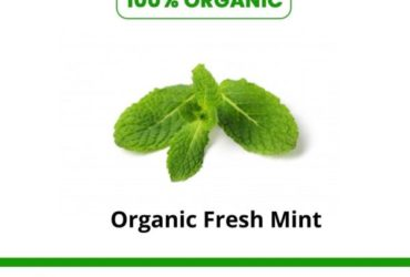 Shop Organic fresh mint online