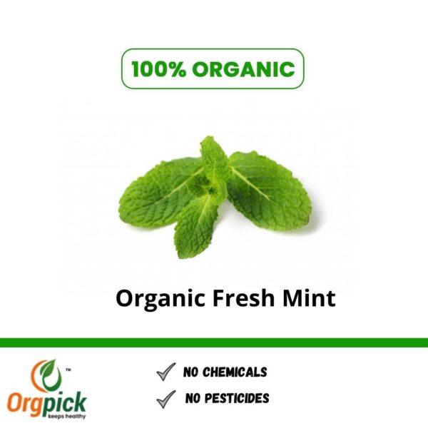Shop Organic fresh mint online