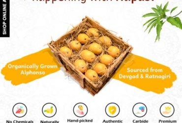 Alphonso or Hapus Mango Online at Orgpick