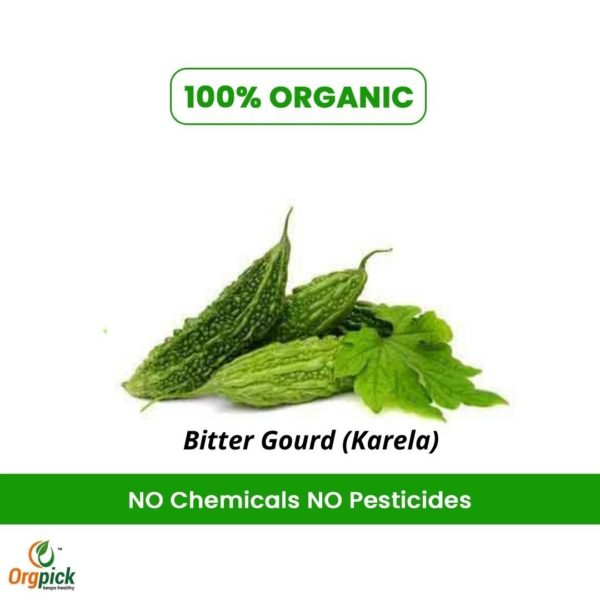 Get the amazing health benefits of Bitter Gourd.