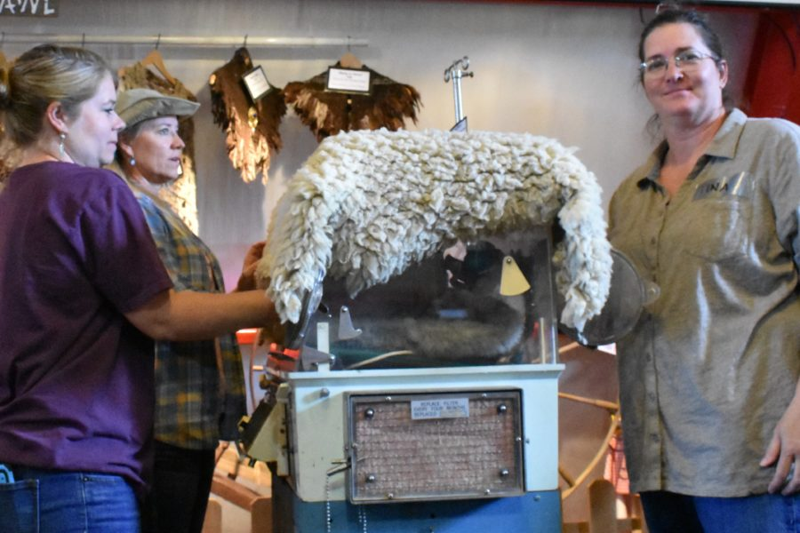 Animal Husbandry & Herd Health Class