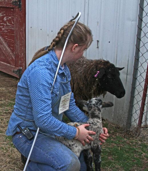 Small Ruminant Animal Husbandry & Herd Health Class